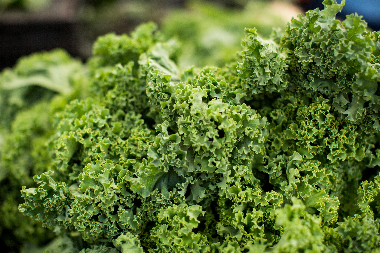 acompañamiento para carnes kale